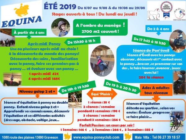 Vive l'été en Provence: Du poney ,des poneys... 100% Equitation !!! c'est parti !!!