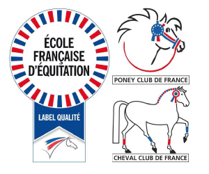 Equina-Une-Ecole-Francaise-D-Equitation-Labelisee-_a40.html